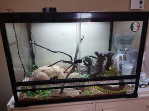 Reptile terrarium and accessories