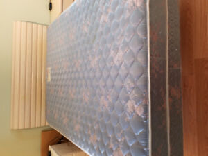 Free Sealy Queen Mattress and Boxspring