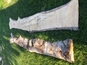 White Birch Live Edge Wood Slabs