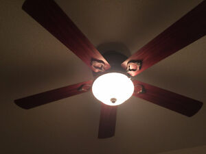 Hunter Ceiling Fan with Remote