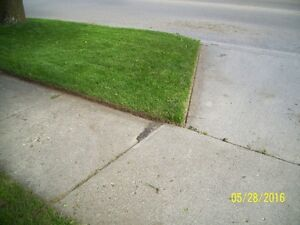 Quality Lawn Cutting, Lawn Edging, Hedge Trimming Services Kitchener / Waterloo Kitchener Area image 8