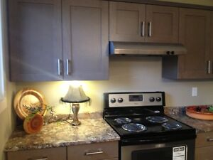 Beautiful newly renovated Condos for Rent in Watrous, SK. Regina Regina Area image 8