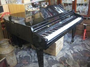 NEW - ROBSON Electronic Baby Grand Piano