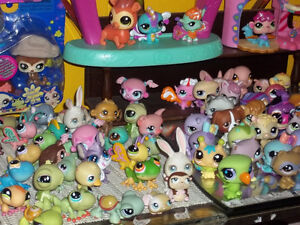 ONTARIO'S LARGEST SELECTION OF LITTLEST PET SHOPS London Ontario image 6