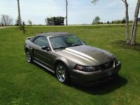 Ford Mustang GT, Immaculate condition