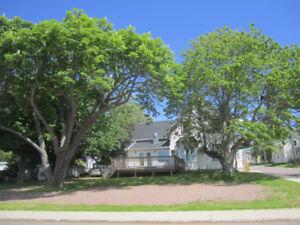 位于Summerside市区中心商住两用房整栋出租/出售