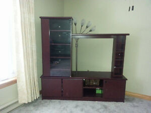Entertainment Unit with glass door