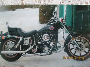 sturgis collection