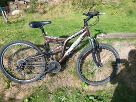 Adult bike full suspension