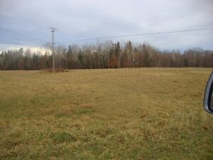 Five +/- Acres with Beach Access to Grand Lake, Scotchtown