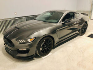 2017 Shelby GT350, Track Pack + Electronics + Recaro's