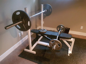 Weight Bench and Curl Bar.