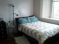 Fully Furnished 1 bedroom Suite in a Great Location!