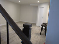 Spacious, bright,  newly renovated 2 bedroom apartment
