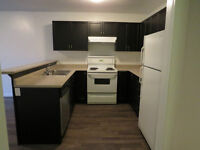 GEORGIAN COLLEGE STUDENT RENTAL - HOUSE/APARTMENT FOR RENT