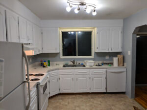 3 Bedroom: Newly Renovated - Available April 1st