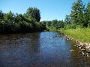 River Front House & Land Edmonton Edmonton Area image 3