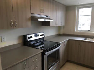 Brand New Townhome For Rent In Oshawa