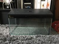 Fish/Turtle Tank - Clear Seal
