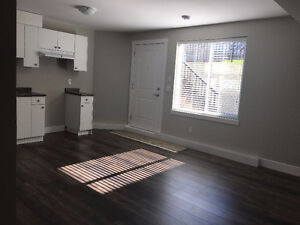 Brand new 2 bedroom suite with private entrance