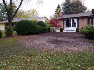 Quality exterior services - pressure washing, driveway sealing London Ontario image 8
