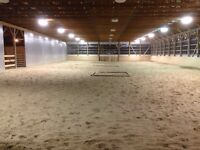 HORSE BOARD AND RIDING LESSONS!!