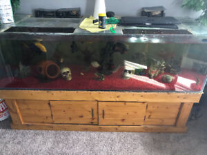 150 gallon custom made fish tank