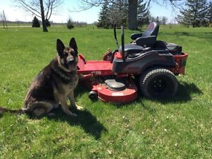 """Only One..  2015 Big Dog Alpha MP 54"""" only 7 hrs"""