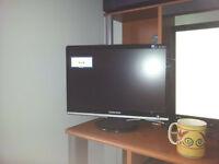 TWO 19 inch LCD monitors one has speakers
