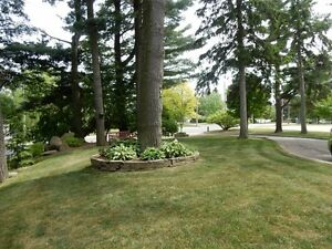 Privacy! Tillsonburg - Ravine Lot - London Ontario image 16