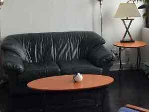 Sofa et tables de salon