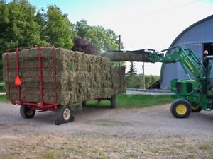 First Cut Alfalfa/Timothy hay small square bales