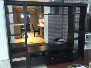 Beautiful Entertainment wall unit - Excellent condition!