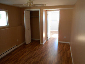 1 bedroom apartment in St.Antoine. Electricity included