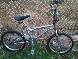 Old School Survivor BMX