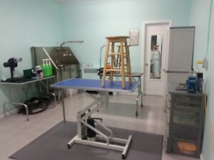 Pet Grooming Salon, for sale Windsor On Cambridge Kitchener Area image 1