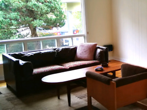 Danish couch and vintage coffee table