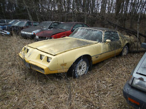 1980 Pontiac Yellowbird
