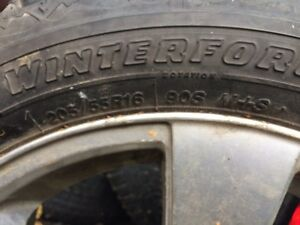 Rims and used winters