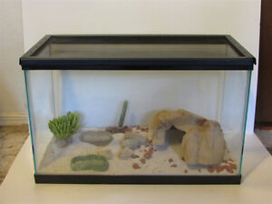 10 Gallon Terrarium