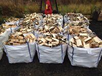 Hardwood Logs Soft wood Logs