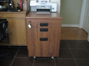 Legal paper size filing cabinet