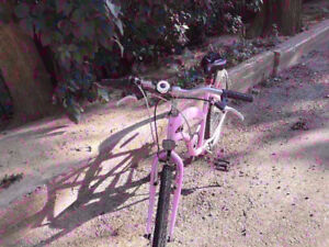 No.2: Purple city cruiser with both new high tension tires