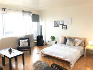 Beautiful 1 1/2 Apartment for rent In NDG