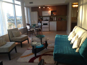 Spacious 1+1 Bed Furnished Condo in Toronto Downtown