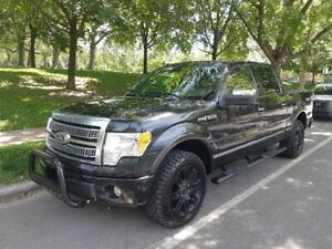 2010 F150 Platinum - Fully loaded, low kms, no accidents!