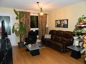 Maison à vendre dans un quartier tranquille à Alma Lac-Saint-Jean Saguenay-Lac-Saint-Jean image 3