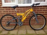 Mountain Bike 24 Inch