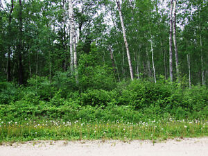 Lot 3 Wilson Cres., Big River