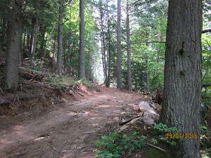 Wakefield 11.75 acre lot for sale.